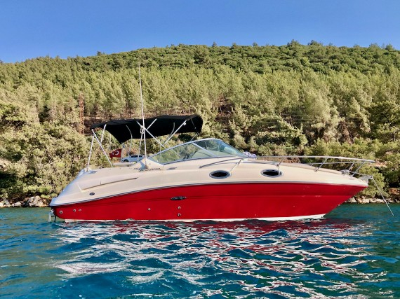 Sea Ray Sundancer 240